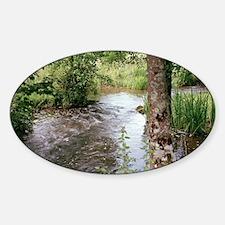 Stream Sticker (Oval)