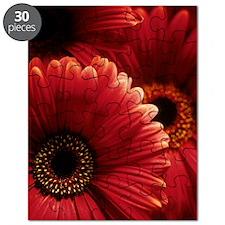 Gerbera flowers Puzzle