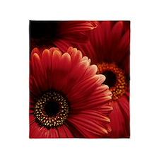 Gerbera flowers Throw Blanket