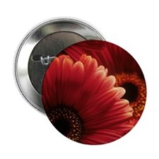 "Gerbera flowers 2.25"" Button"