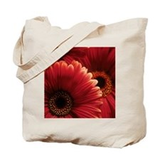Gerbera flowers Tote Bag