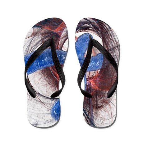 Genetics research, conceptual artwork Flip Flops