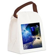 Philae lander Canvas Lunch Bag