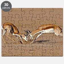Springboks fighting Puzzle