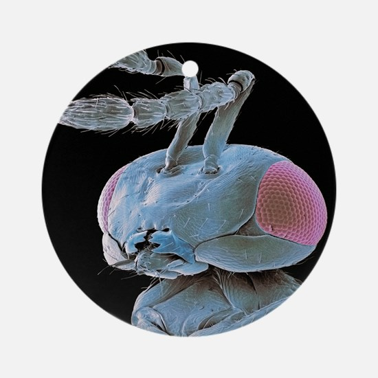 Parasitic wasp, SEM Round Ornament