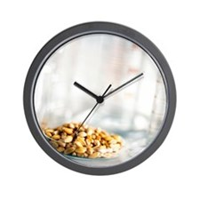 Food research Wall Clock