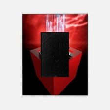 Firewall protection, conceptual artw Picture Frame