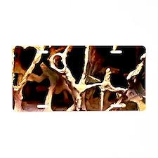Osteoporosis bone structure Aluminum License Plate