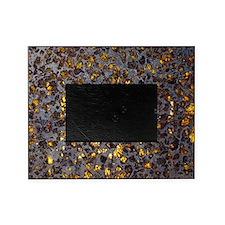 Pallasite meteorite Picture Frame