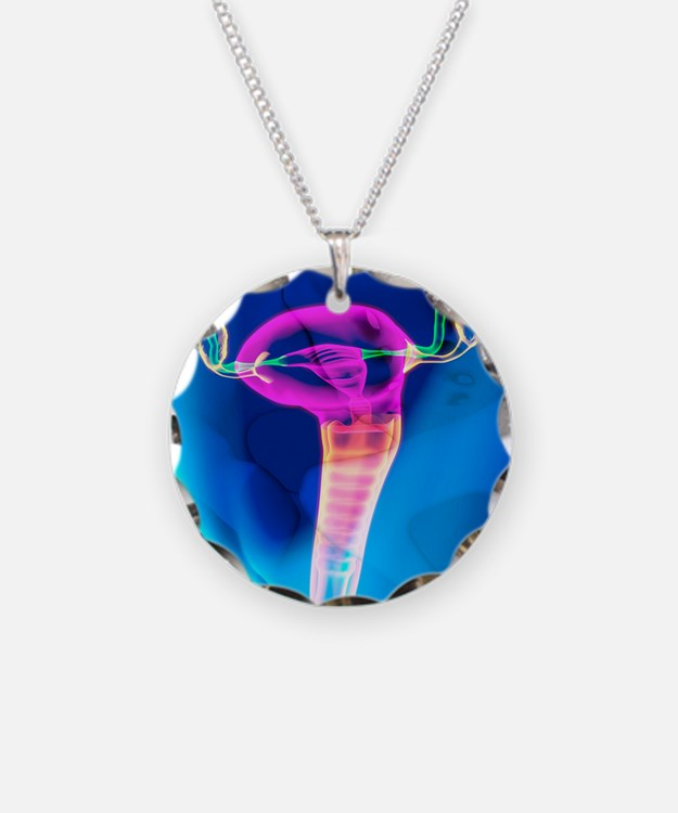 Female reproductive system,  Necklace