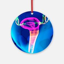 Female reproductive system, artwork Round Ornament