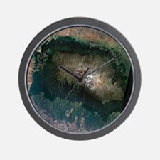 Snow on Mount Kilimanjaro, 2000 Wall Clock