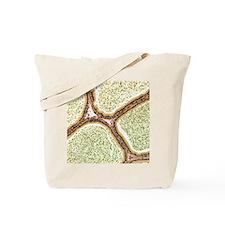 Epididymis, light micrograph Tote Bag