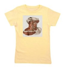 Neck vascular anatomy, historical artwo Girl's Tee