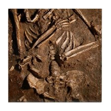 Neanderthal skeleton, Kebara Cave, Is Tile Coaster