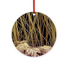 Dog hair, SEM Round Ornament