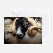 Scottish blackface ram Greeting Card