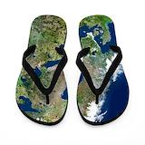 Scandinavia Flip Flops