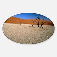 Sand dunes Decal
