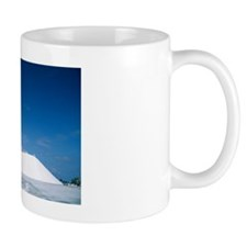 Salt pan industry Mug