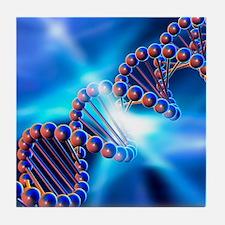DNA strand, artwork Tile Coaster
