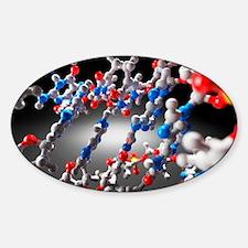 DNA molecule, artwork Decal