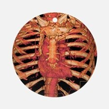 Ribcage and blood vessels, 3D CT sc Round Ornament