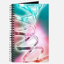 DNA molecule, artwork Journal