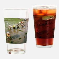 Rice farmers Drinking Glass