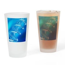DNA molecule, artwork Drinking Glass
