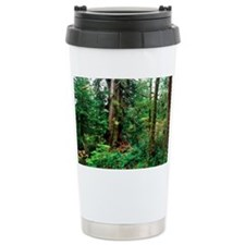 Rainforest floor Travel Mug