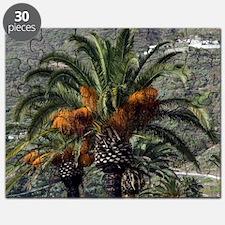 Date palms (Phoenix dactylifera) Puzzle