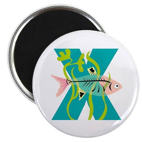 X is for Xanadu Magnet