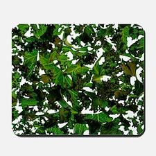 Curly kale Mousepad