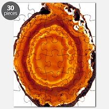 Cut agate Puzzle