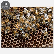 Queen bee with worker bees Puzzle