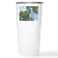 Quartzite rocks covered in lich Travel Mug