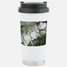 Quartzite rocks Travel Mug
