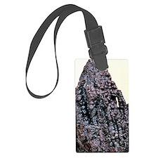 Psilomelane mineral, manganese o Luggage Tag