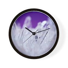 Quartz crystals Wall Clock