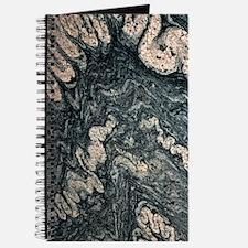 Ptygmatic folds in gneiss rock Journal