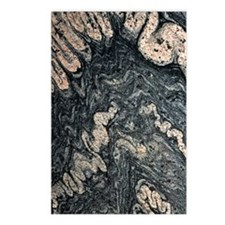 Ptygmatic folds in gneiss Postcards (Package of 8)