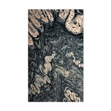 Ptygmatic folds in gneiss rock Decal