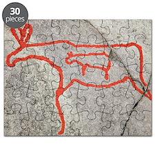 Prehistoric rock petroglyph Puzzle