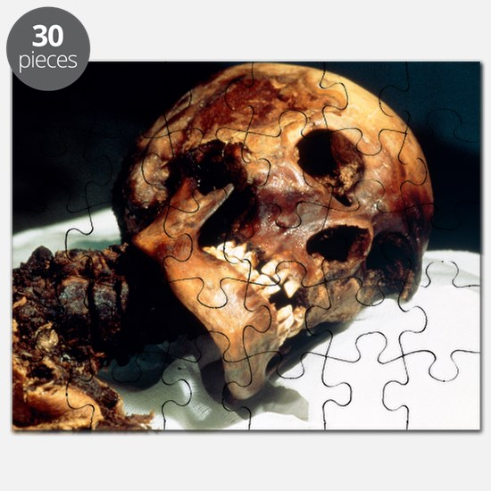 Preserved body of the Pazyryk Ice Maiden Puzzle