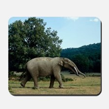 Prehistoric elephant, artwork Mousepad