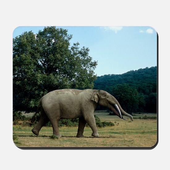 Prehistoric elephant, artwork Mousepad