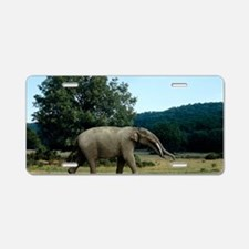 Prehistoric elephant, artwo Aluminum License Plate