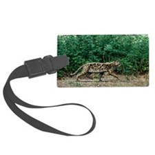 Prehistoric cat, artwork Large Luggage Tag