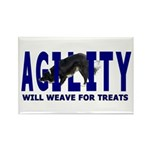 AGILITY: Will weave Rectangle Magnet (10 pack)
